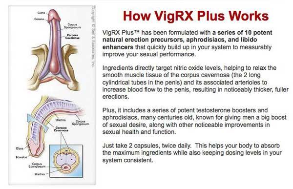 VigRX Plus Sold In Canada