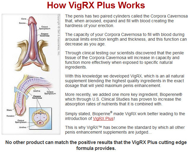 Do VigRX Plus Work