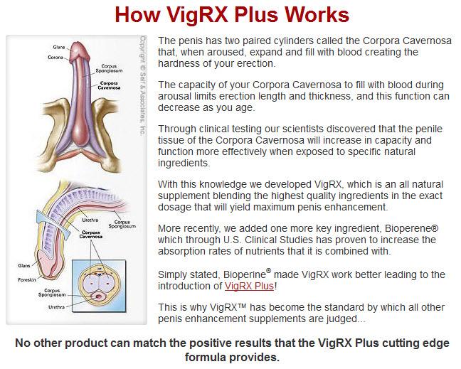 Prix VigRX Plus En Algerie